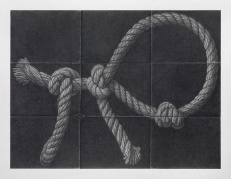 David Musgrave Rope animal, 2008