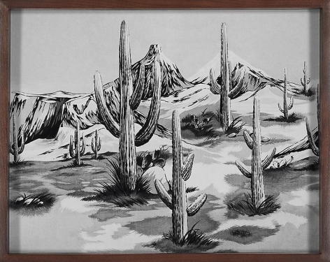 Elad Lassry Desert, 2010