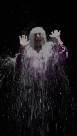 Bill Viola, Howard, 2008