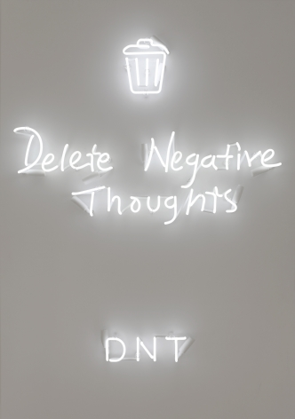 DNT, 2018, Neon mounted on metal