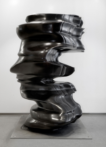Tony Cragg, 3-D Incident, 2007