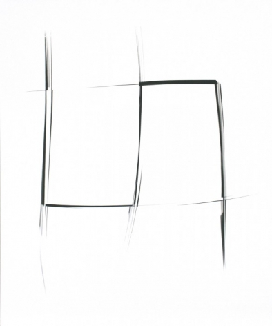 SHEREE HOVSEPIAN, Untitled #86 (Haptic Wonders Series), 2013