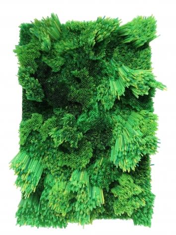 Francesca Pasquali, Green Straws, 2013