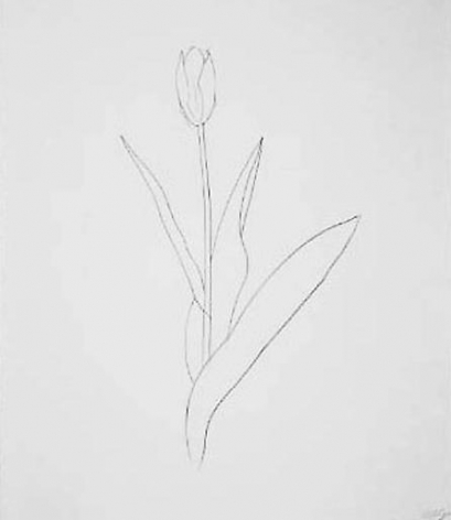 Ellsworth Kelly Yellow Tulip