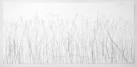 Linda Ridgway Did grass and garden ground confess it snowed, 2015