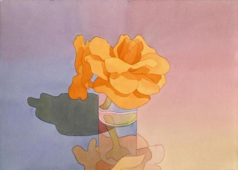 Orange Begonias in Glass