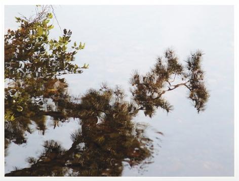 Reflection Study (Kenrokuen), 2017