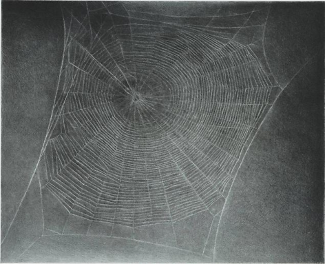 Vija Celmins Untitled (Web 4)