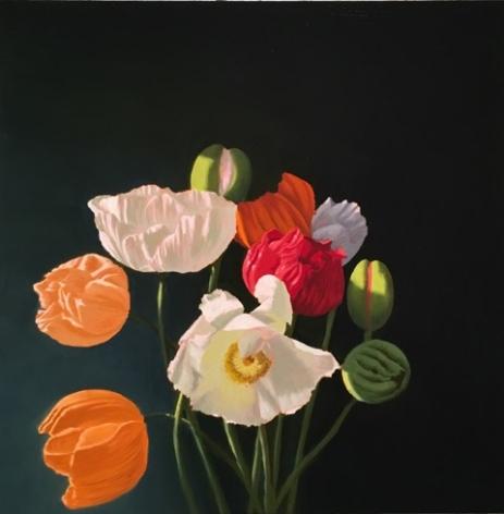 Bruce Cohen Poppies, 2019