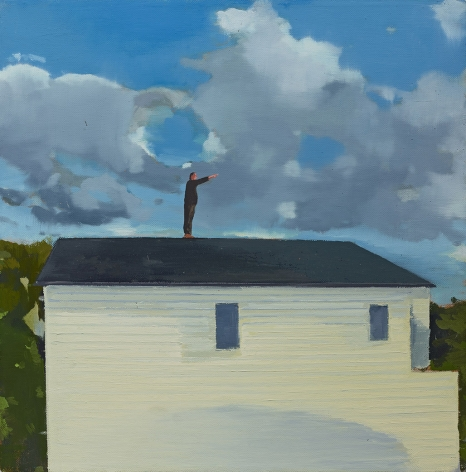 Christopher Brown Howard Up Top, 2016