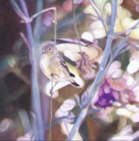 Goldfinch III 2005