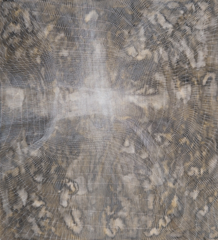 Sam Messenger Veil from Electra, 2017