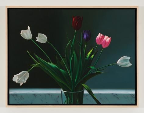 BruceCohen Tulips, 2020