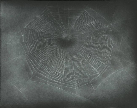 Vija Celmins Untitled (Web 3)