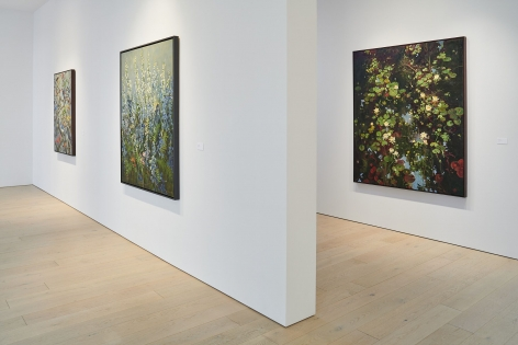 Installation Image ofJohn Alexander: Landscape and Memoryby Impart Photography