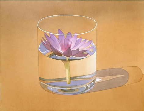 Water Lily in Glass