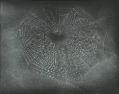 Vija Celmins Untitled (Web 3), 2002