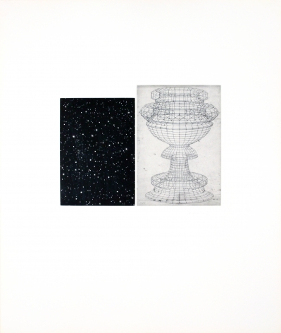 Vija Celmins, Constellation - Uccello, 1983