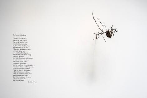 Linda Ridgway The Sound of Trees, 2015