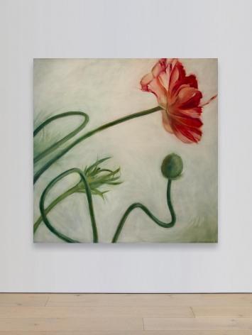 Contemporary Women Artists
