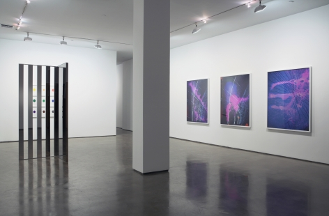 Installation view Brave New year