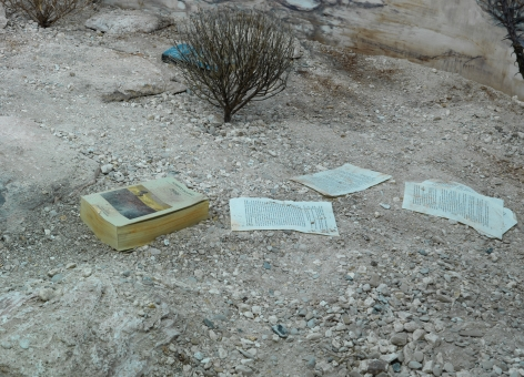 Dominique Gonzalez-Foerster, Chronotopes & Dioramas (Desertic), 2009/2015