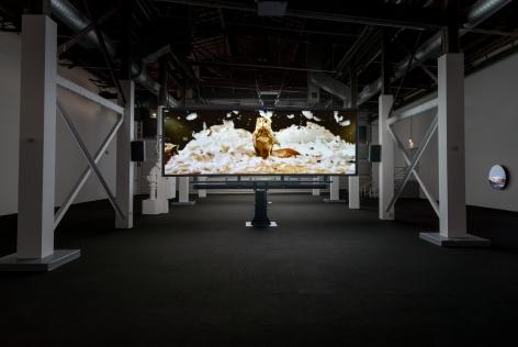 Doug Aitken, migration (empire), 2008, MOCA Los Angeles, 2016