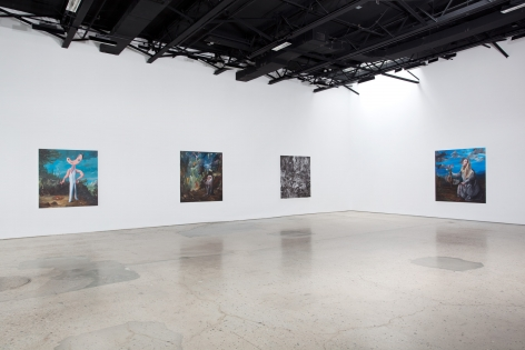 Djordje Ozbolt, Installation at 303 Gallery, 2011