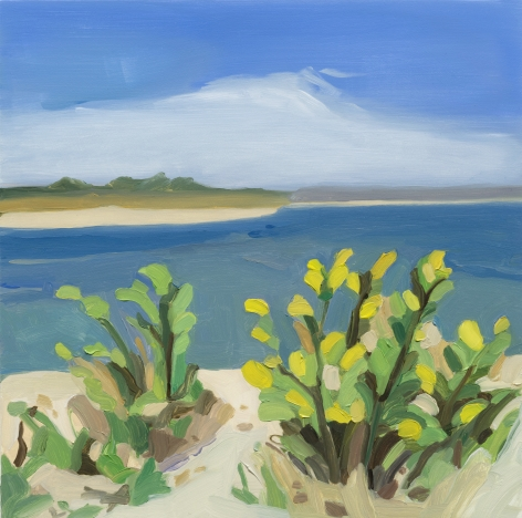 Maureen Gallace, Yellow Flowers - Long Island, 2014