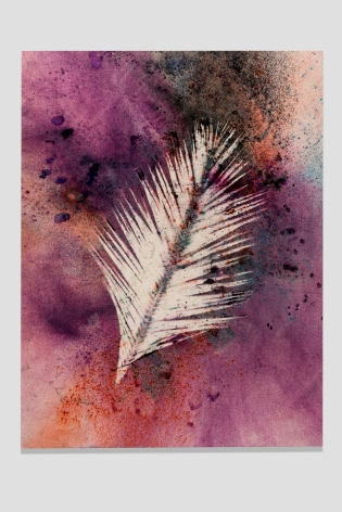Sam Falls, Untitled (Venice, Palm 4), 2014, Dye on canvas, 100 x 76 inches