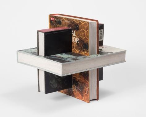 Matt Johnson, 3 Intersecting Books (Andy Goldsworthy, Animal Behavior, Leonardo da Vinci), 2020