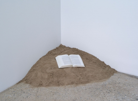 Dominique Gonzalez-Foerster, Untitled, 2011