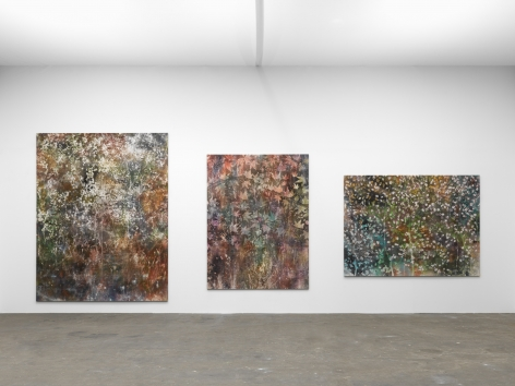 Installation view: Sam Falls, Art Basel - Art Unlimited, Booth U46, Courtesy 303 Gallery, New York; Galleria Franco Noero, Torino; Galerie Eva Presenhuber, Zurich / New York