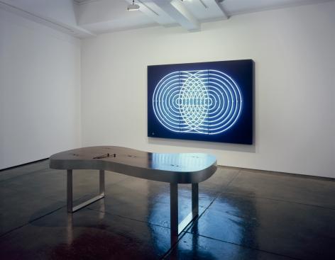 Doug Aitken, Installation view: 303 Gallery, 2007