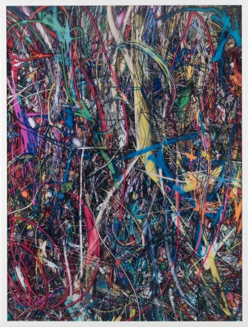 Florian Maier-Aichen, Untitled (Lasso Painting #3), 2016