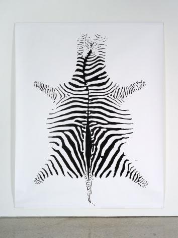 Hans-Peter Feldmann, Zebra