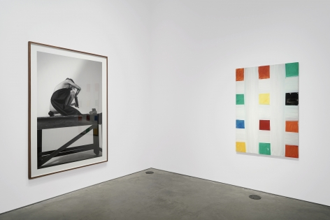 Installation view: Project Room: Armory Highlights, 303 Gallery, New York, 2021