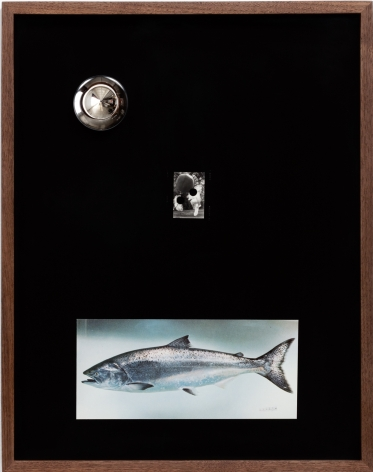 Elad Lassry, Untitled (Boots, King Salmon), 2018
