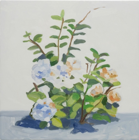 Maureen Gallace, Summer Plant / August 14th, 2016