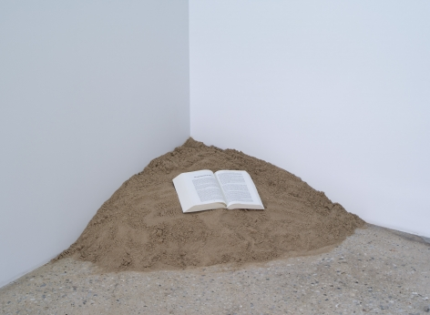 Dominique Gonzalez-Foerster, Untitled, 2011