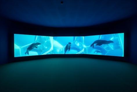 Doug Aitken, Underwater Pavilions (installation), 2017