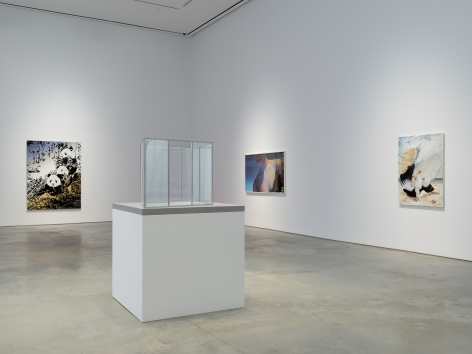 Installation view:Winter of Discontent,303 Gallery, New York, February 6 - April 1, 2021