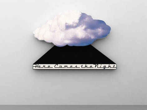 Doug Aitken, here comes the night, 2011
