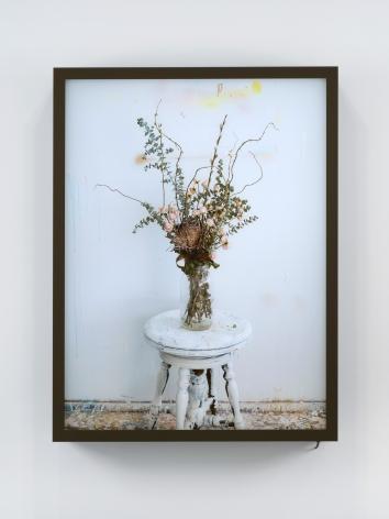 Rodney Graham, Dead Flowers In My Studio 2, 2017