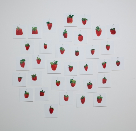 Hans-Peter Feldmann, One Pound Strawberries