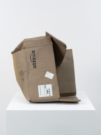 Matt Johnson, Untitled (Amazon Box), 2016