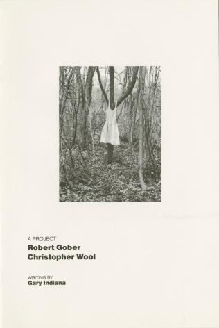 Robert Gober, Christopher Wool