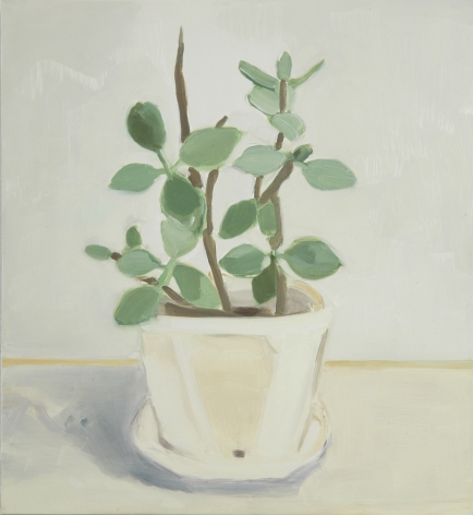 Maureen Gallace, Our Desert Plant #1, 2006