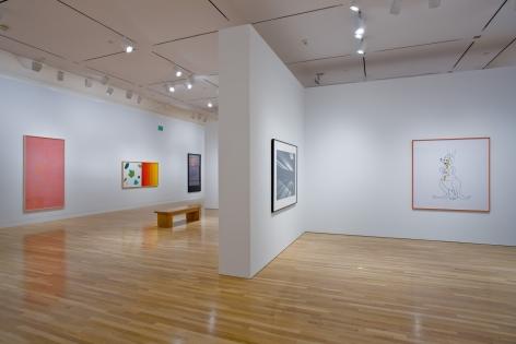 Larry Johnson, Installation view: Hammer Museum, Los Angeles, 2009