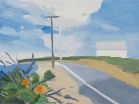 Maureen Gallace, Surf Road, 2015